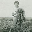 JBoy holding garlic plants